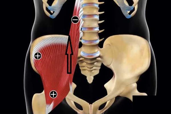 воспаление крестца и тазобедренных суставов