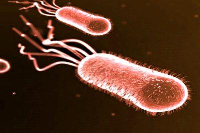 половой цистит возникает из-за нарушения микрофлоры в мочеполовой системе
