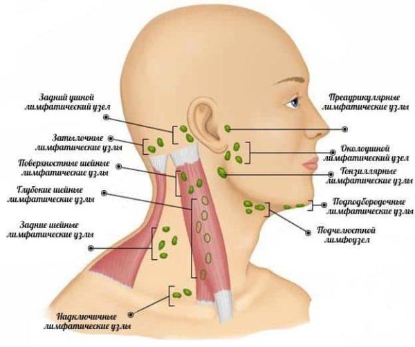 Воспаление костной ткани народное лечение