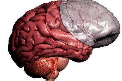 менингит- это воспаление окружающих головной, спинной мозг оболочек
