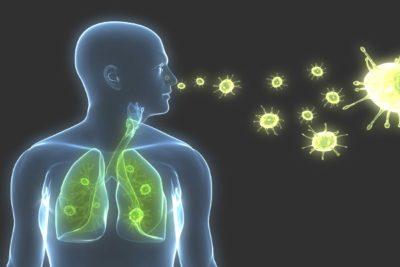 воспаление легких вызывают бактерии, вирусы или грибы