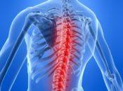 Боль в мышце спины